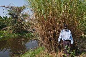 VaPhiri at the oldest of his three fish dams