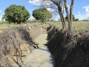 VaPhiri's trenches re-distribute water out from the drainage line across his fields for micro-irrigation and ground water (holding water even in a drought year like this)